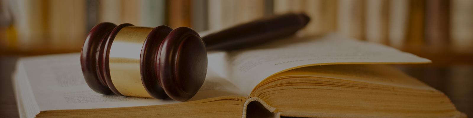 seo case study, business case studies, legal services seo case study, organic seo, best seo, seo optimisation